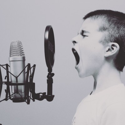 microphone(c)pixabay